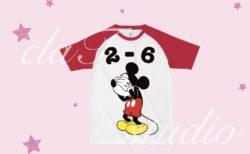 ミッキーマウス_fv