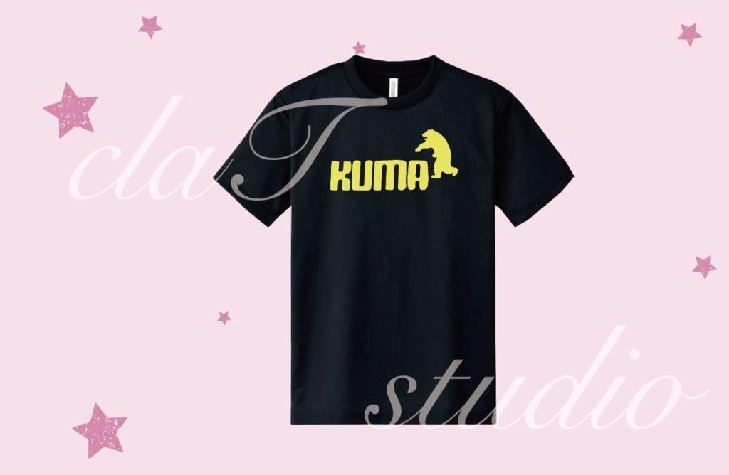 puma_fv